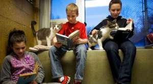 criancas-lendo